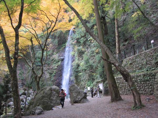 養老の滝の紅葉.jpg